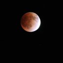 皆既月食2014年10月8日は日本全国で見れるって!?